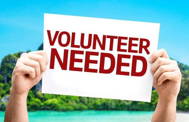 Non-profit - Volunteer