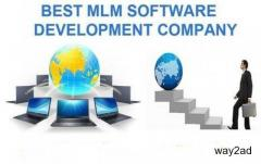 Secrets to use MLM Software to Create a Successful Business in Chennai