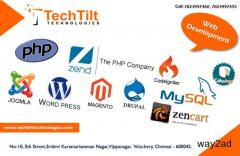 Professional wesite development services company in chennai
