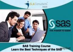 Best SAS Training Course in Delhi Provide by SLA Consultants India