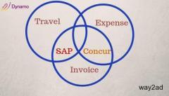 SAP concur|sap concur solutions|SAP Travel and Expense Management