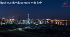 SAP ERP for automotive industry