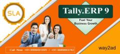 Are You Looking for Best Tally Institute in Delhi