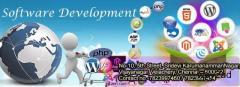 Software development companies in velachery