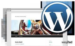 Wordpress hosting on gulfnetlink