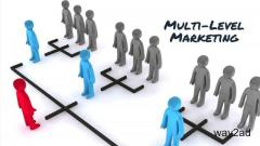 MLM Software Chennai getting the Best Software to Power Up
