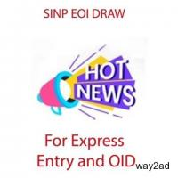 SINP Conducts New EOI Draws for Express Entry and OID Candidates