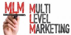 MLM Network Software Development in Chennai