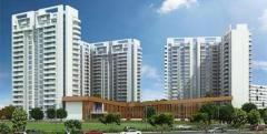 Ambience Creacions 2/3/4 BHK Luxury Apartment In Gurgaon