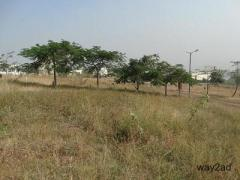 Commercial Plot Available For Sale In Katraj