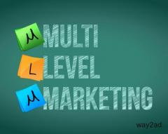 Fascinating MLM Software Chennai Tactics That Can Help Your Business Grow