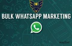 Bulk whatsapp software HIGH SPEED