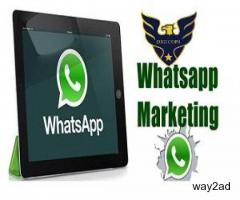 Bulk whatsapp software HIGH SPEED
