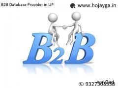 B2B Database Provider in UP