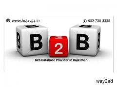 B2B Database Provider in Rajasthan