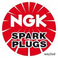 NGK G-Power Spark Plugs | Platinum Alloy Material Spark Plugs
