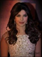 Best Software Developer Name Priya Golani