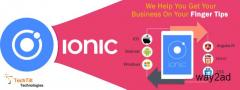 website development services company in velachery