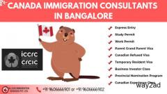 Looking for the best immigration consultants in Bangalore