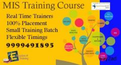 Attend MIS Training Course in Delhi with Job Placement Only at SLA Consultants India