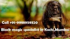Astrologer Black Magic Specialist in Mumbai +91-9988959320