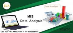 Best MIS Training Institute in Delhi NCR- SLA Consultants India