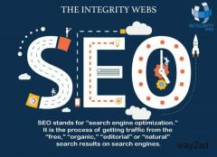 Best SEO Services in the Delhi/NCR