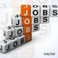 Work From Home - Govt Registered Company - online jobs