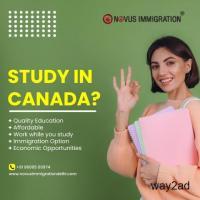 Canada PR Visa Consultants in Hyderabad, Novus Immigration Hyderabad
